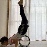 一人でも強化できる背筋強化訓練 股関節ストレッチクッション&ストレッチリング活用編 セルフ背筋で腰の筋肉を強化しよう